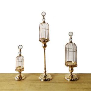 cages oiseaux doré